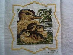 Cross stitch square for Arya B's quilt